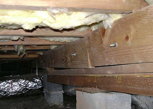 sagging crawl space with wooden shimming a Port Royal crawl space